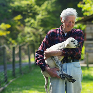 Farmer holding lamb